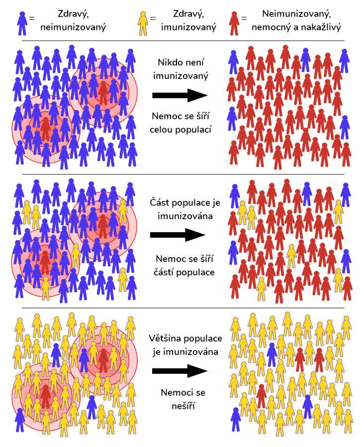 kolektivní imunita